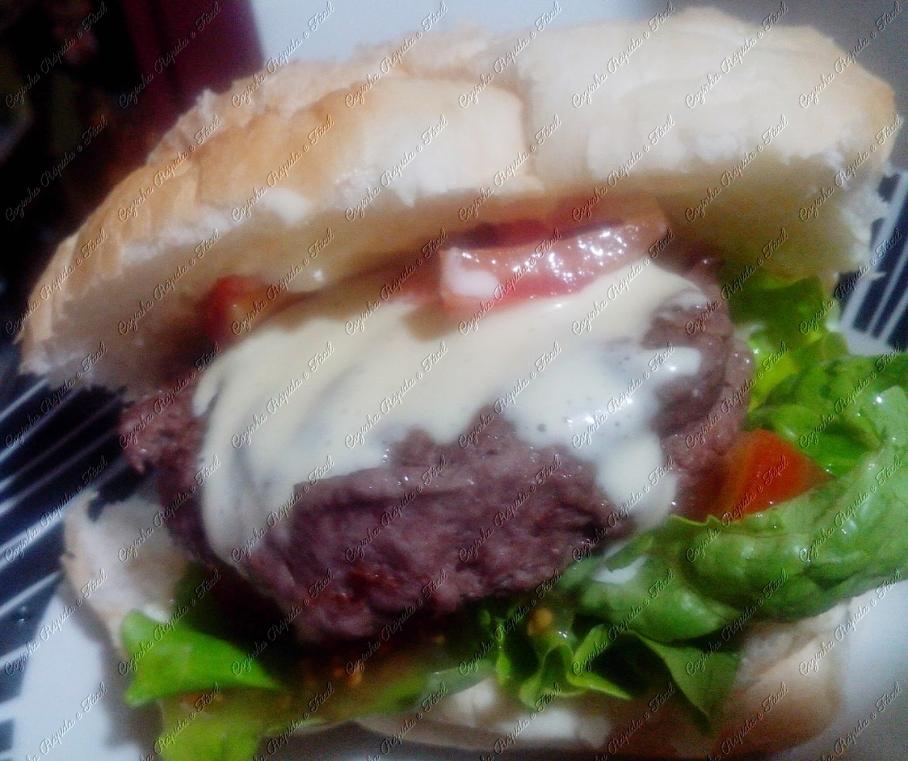 hamburguer 037